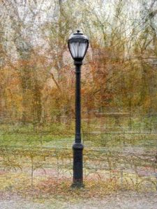 Central Park Lamp, Two © Pep Ventosa