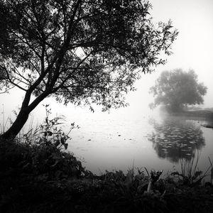 Autumn Mist II © Frang Dushaj