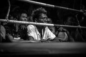 Muay Thai VI