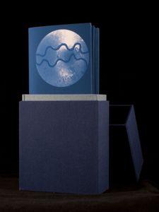 Transmission Artist Book: Syphilis