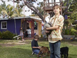 Myles and Max's Backyard