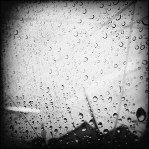 Rain, Oslo #13