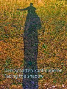 Den Schatten konfrontieren