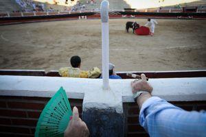 Bullfighting Spectators - Spain
