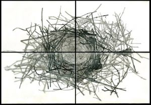 "Nest IV, 2010                                              24""h x 36""w x 1.5""d                                         archival pigment prints & encaustic on panels                                                      © Christa Bowden"