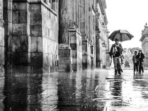 Defying the Rain