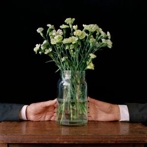 the painted green carnations