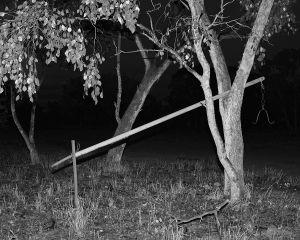 Hook, Marlee Downs, Mitchell, QLD Australia, 2015.
