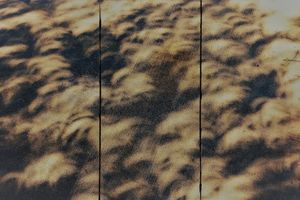 Eclipse Screen 10. Oil Stain