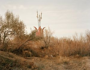 Priozersk II, (Tulip in Bloom). Kazakhstan, 2011 © Nadav Kander