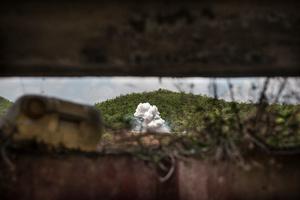 "Detonation of UXO at the ""Elephant Range"" in Kampong Chhanang Province, Cambodia."
