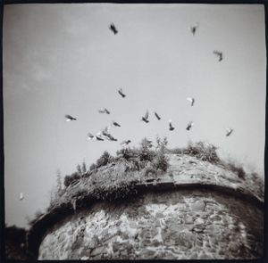 16th  c. Pigeonnier, Hillion, France (Côtes dArmor) 2005 © Vicki Topaz