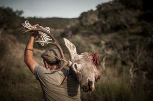 José Pinguelo walking with the head of a hunted deer. © Antonio Pedrosa
