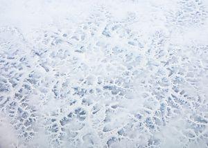 Yukari Chikura - FROZEN WORLD | LensCulture