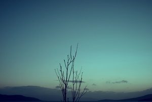 Isle Of Skye #442