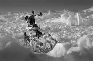 Polar bear hunters, Hjelmer and Isak, on rough packed ice on the east coast of Greenland. The temperature was minus 35 degrees. © Ragnar Axelsson