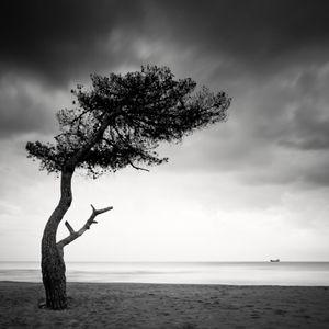 Horizon Anchored © Frang Dushaj
