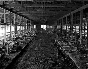 "An abandoned farm inside the 20km exclusion zone from the Fukushima Daiichi nuclear reactor. Dead cows are still lying in the farm. This place was visited by the photographer in April 2011 and it has been left unchanged since. From the series ""Fragments/Fukushima"" © Kosuke Okahara"