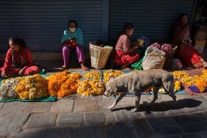 Nepalese women sell garlands of flowers near a temple in the historical centre of Kathmandu on May 4, 2015.
