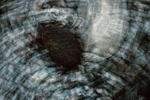 Fluid Rocks #8