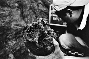 An anthropologist pulls a skull from the earth. © Victor Blue, 2004