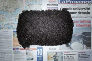 Black Rice. Arles, France. November 2011. 5.60 Euros (7.68 usd)