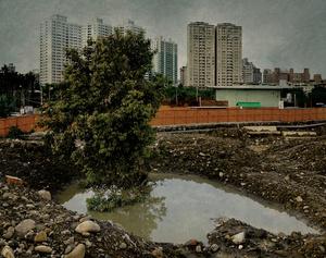 Transient Landscape # 23