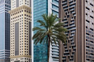 Palm in Dubai