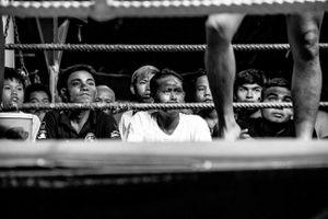 Muay Thai XI