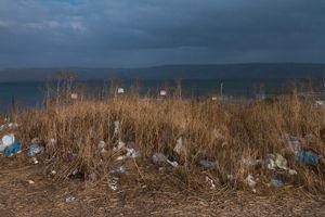 Kinneret © Alana Perino