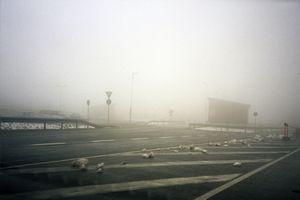 From Zona © Aleksandra Vajd