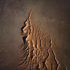 BROWN. Namib Desert, Namibia.