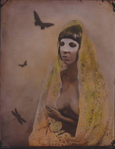 © Zelko Nedic, Like A Virgin           8x10 Tintype, Hand Coloured