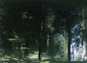 Axel Hütte, Elfenweiher-2, Germany, 2004 © Galerie Nikolaus Ruzicska, Paris Photo LA