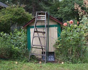 Jay's Garden Shed, Toronto Islands