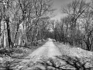 A Country Road