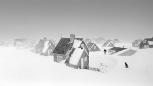 Blizzard in Ittoqqortoormiit village on the east coast of Greenland. © Ragnar Axelsson