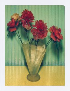 Mexican Flowers. New York City, 1996. Archival pigment print from a polaroid 142 x 107 cm ( 55 7/8 x 42 1/8 in. ). Edition of 7.