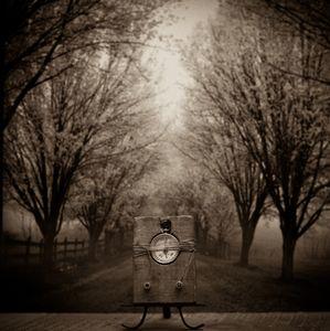 Moral Compass  © Lori Vrba