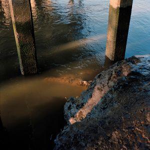 The Muddy Banks of the Wishkah River, Aberdeen, Washington