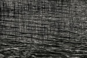 Upper Hadlock Pond 58, © Alan Henriksen