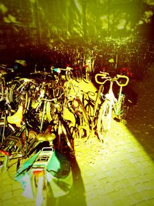 Netherland bicycles © Jürgen Novotny 2013