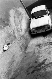 Renault 4 © Velibor Bozovic