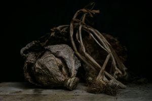 Perish. Savoy Cabbage and Garlic.