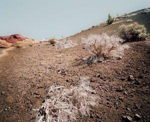 El Teide, view #09