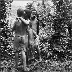 DANI, Papua Provinz, Indonesia