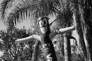 Wind Puppet, Glendale California