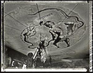Serpentaius, el Cobre, 2002. © Elaine Ling
