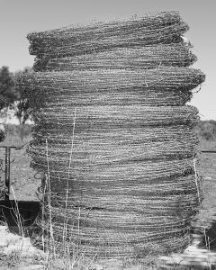 Barb Wire, Wyoming Station, Charleville, QLD Australia, 2015.