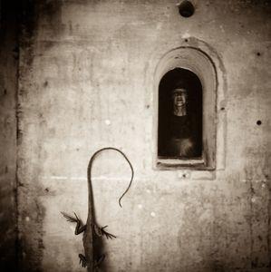 Save Yourself  © Lori Vrba